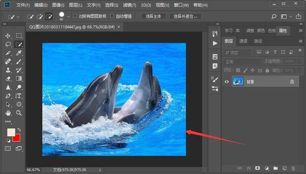 教你用Photoshop软件把照片裁剪成圆形  photoshop 第1张