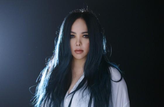 张惠妹音乐合集1996-2017年31张专辑歌曲Flac  张惠妹 第1张