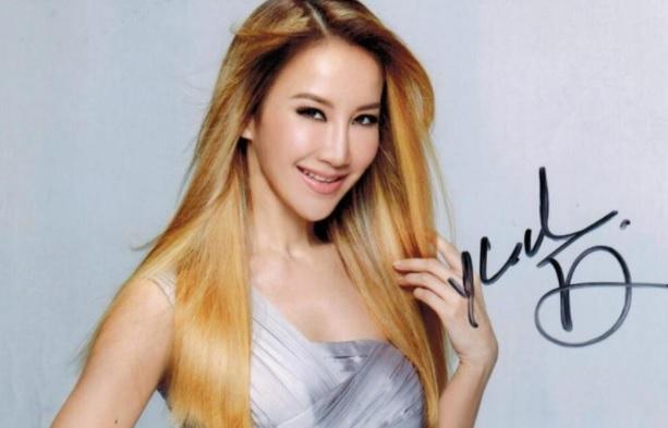 李玟音乐合集1994-2013年33张专辑歌曲下载 - 竹林猫  李玟 第1张