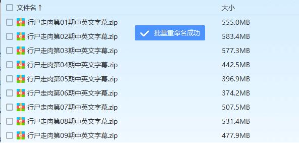[Windows] 百度网盘文件在线批量改名工具  百度网盘 百度 重命名 第14张