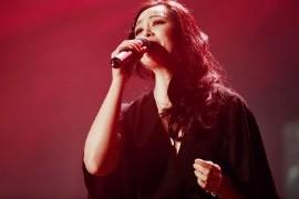 王馨平音乐合集1993-2017年22专辑歌曲下载 - 竹林猫