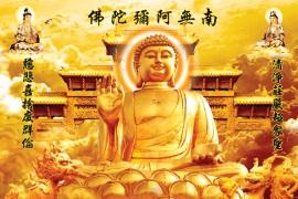 佛缘佛教音乐585首MP3歌曲下载