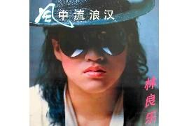 林良乐辉煌精选+旧情回想曲4CD国台语歌曲Flac