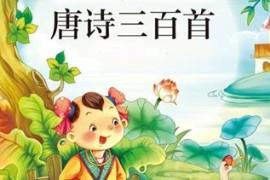 优秀儿童动画《唐诗三百首》全集高清视频