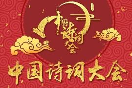 《中国诗词大会》第4-5季国语中字高清视频MP4
