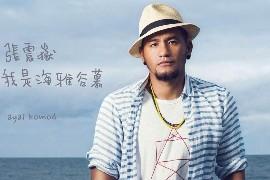 张震岳音乐合集1993-2013年15专辑歌曲下载