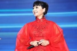 殷秀梅音乐合集1983-2014年16专辑歌曲Wav
