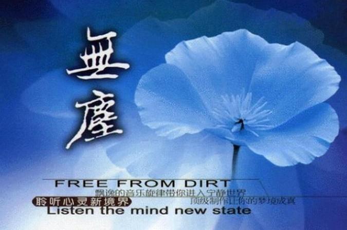 聆听最美佛音《无尘》系列6CD合集Wav  佛教 第1张