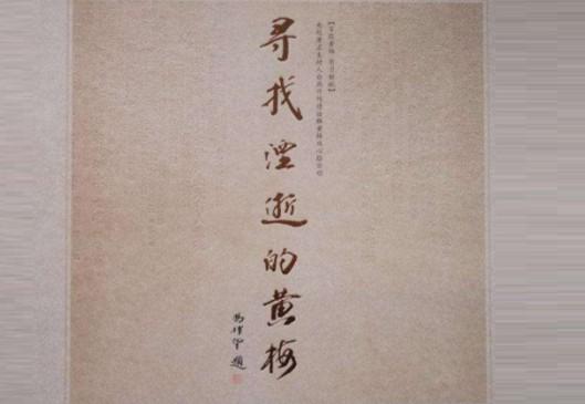 黄梅戏《寻找湮逝的黄梅》10CD黄梅明星倾情献唱Wav
