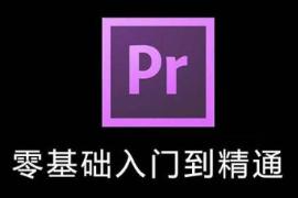 专业级视频编辑自学教程_Adobe Premiere CC视频教程共48课时MP4