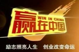 商战真人秀节目《赢在中国》第1-3赛季合集视频