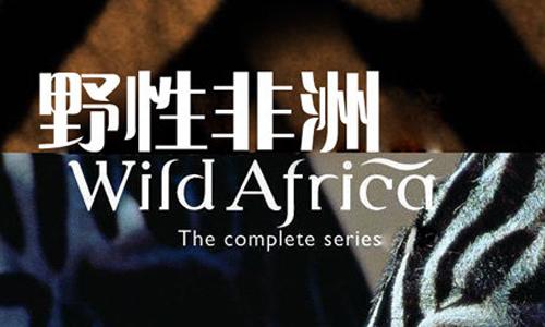 纪录片《野性非洲》全6部高清视频英语中文字合集[AVI/4.09GB]百度云网盘下载  纪录片 第1张