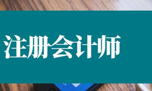 CPA注册会计师考试教学高清培训视频资料打包合集[MP4/PDF/1.80GB]百度云网盘下载  课程资料 第1张