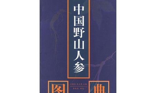 中国野山人参图典高清电子书文档合集[PDF/15.50MB]百度云网盘下载  电子书 第1张