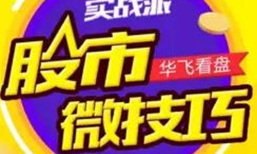 《华飞 | 股市实战微技巧》音频电子文档资料合集[MP3/112.18MB]百度云网盘下载  理财 第1张