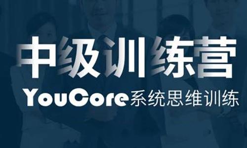 中级训练营《YouCore系统思维应用》视频课程合集百度云下载